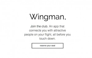 Wingman_dating_app_skies logo